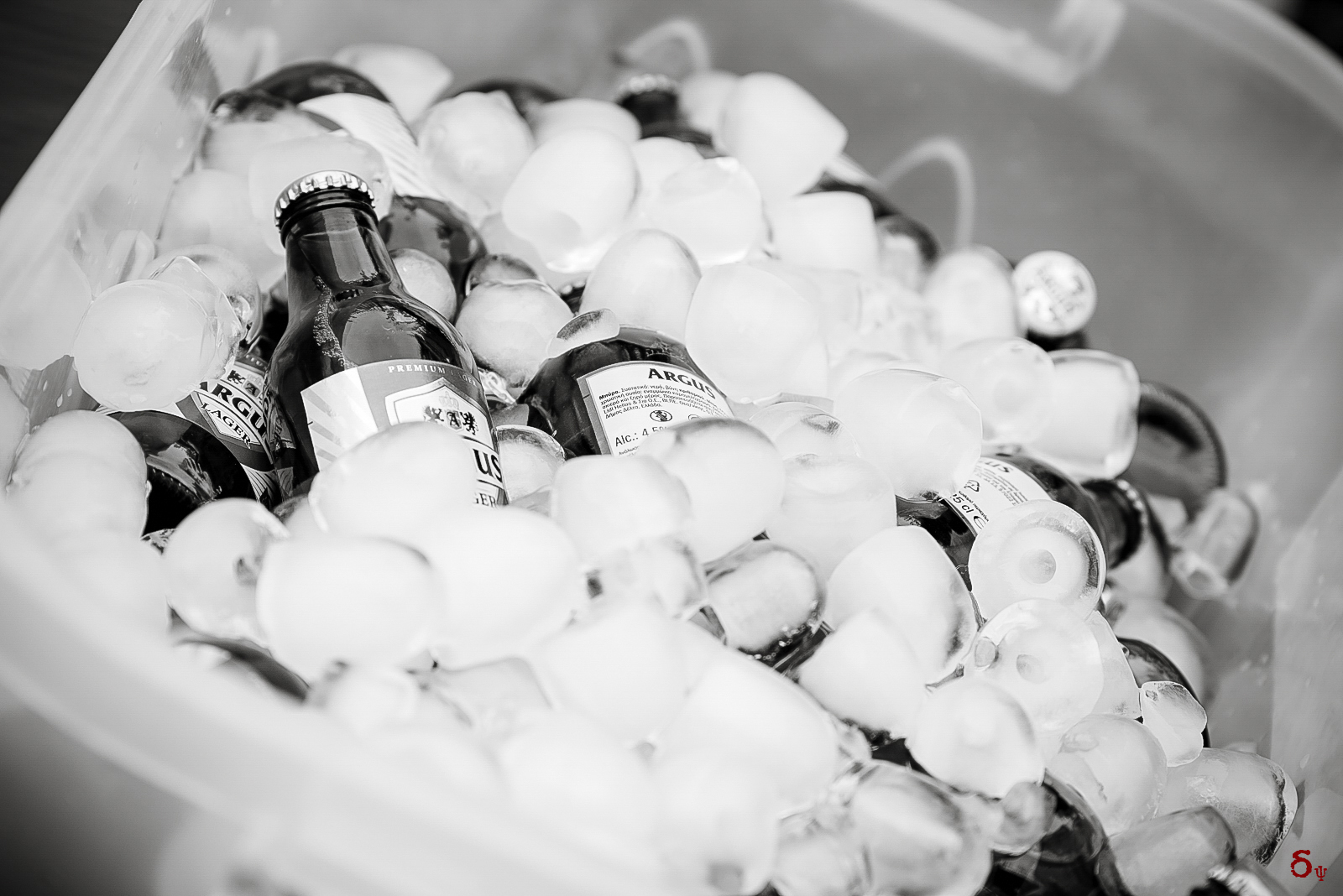 wedding party beers ice bw black and white